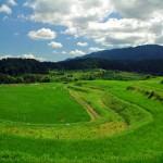 Horseshoe-shaped paddy