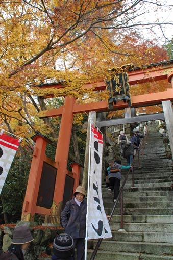 Steep stairway and vermilion torii